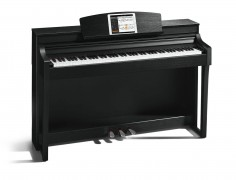 Klaviature in pianina